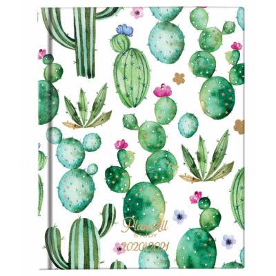 Planall Study Mini B6 Diák Tervező Cactus