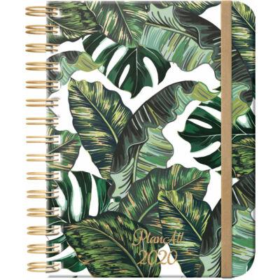 PlanAll 3.0 Jungle Boogie